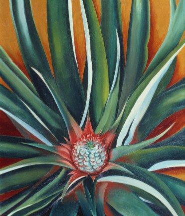 Pineapple Bud