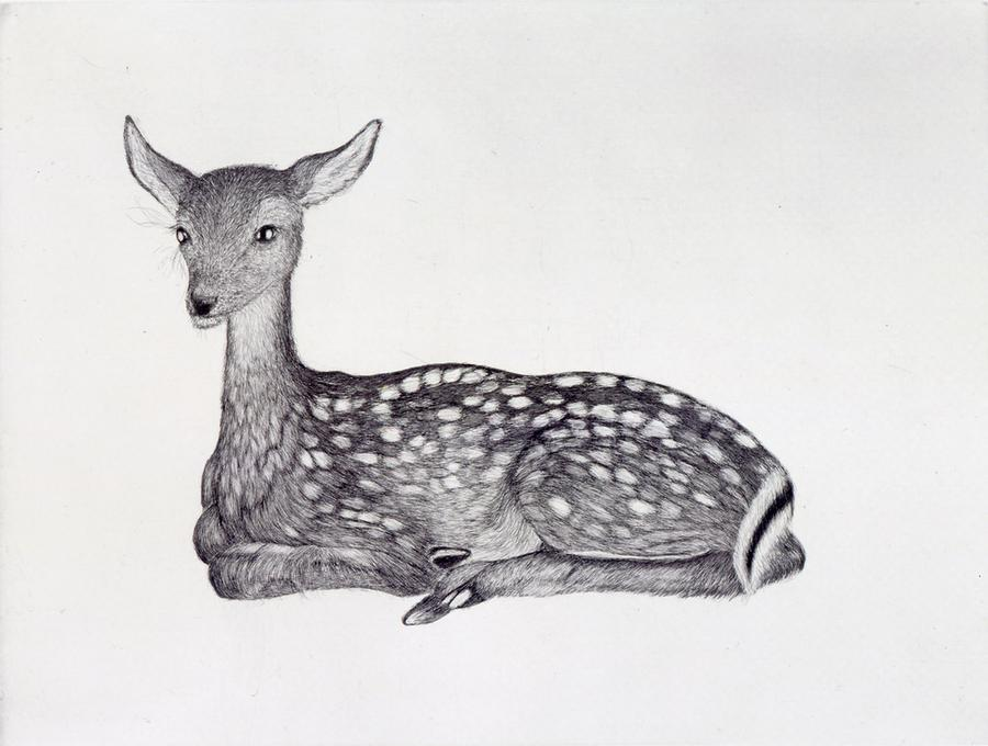 July19_Kiki_Smith_FAWN_2001900x681